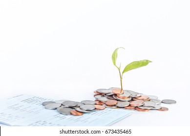stack of coins and account passbook with plant growing out of pile isolated on white background,growth mindset and saving money plan for future concept
