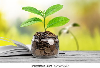 Stack of coins with growth sprout plant