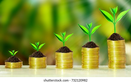 Stack of coins with growth sprout plant with fresh green nature blurred background, Investment concept.