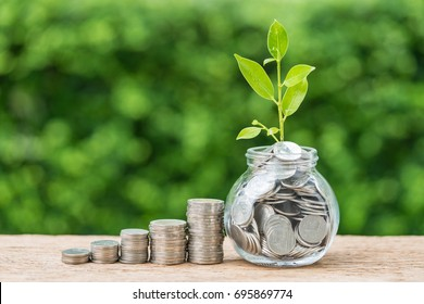 Stack of coins and jar with full of coins with growth sprout plant as business finance investment concept.