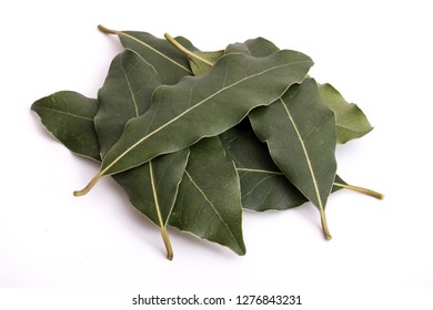 Stack of daphne leaves. Group of daphne leaves isolated on white surface. High detailed closeup photo.