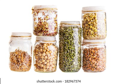 Stack of Different Sprouting Seeds Growing in a Glass Jar Isolated on White Background