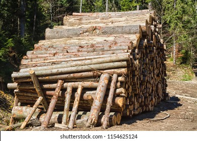 Stack of firewood in mountains waiting for winter. Beskid mountains, Poland