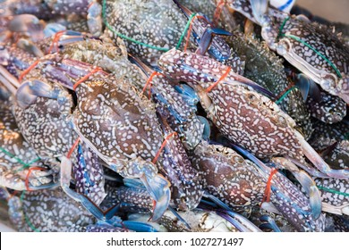 stack of fresh blue swimming crabs in seafood market , Thailand