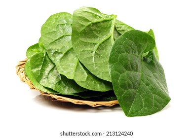 Stack of fresh malabar spinach vegetable leaves on white background