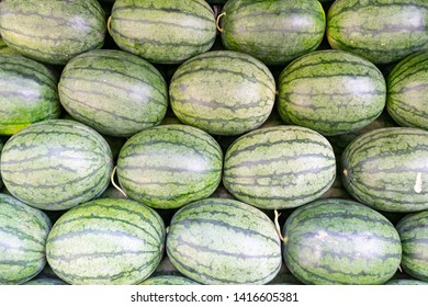 stack of fresh watermelon with green striped pattern   were put for sale in the market with refreshment, ripe, raw and full of vitamin nutrition from organic farm and could be in any delicioud dessert