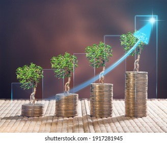 Stack of the golden coin with a tree that grows. The idea of business investment.