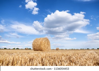 A stack of hay on the summer field. Agricultural landscape at the summer time during harvesting