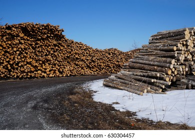 A Stack of logs