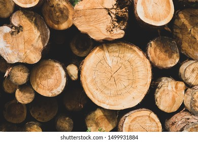 Stack of logs. natural wooden background with timber. log wall. pile of timber