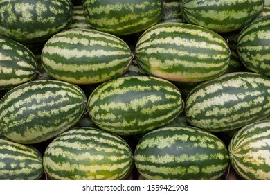 Stack of many big sweet green watermelons in the market.