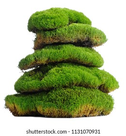 Stack of Moss Clumps Isolated on White