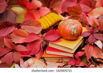 Stack of paper books, small orange pumpkin and mustard yellow knit hat among colorful ivy foliage in autumn. Fall season still life