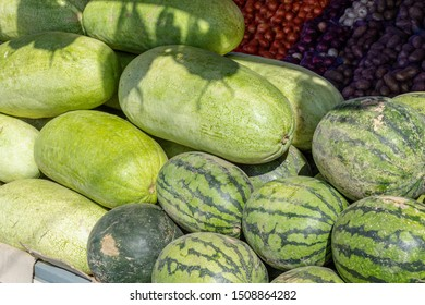 stack pile of watermelons on the farm market after harvest. Eco farm product.