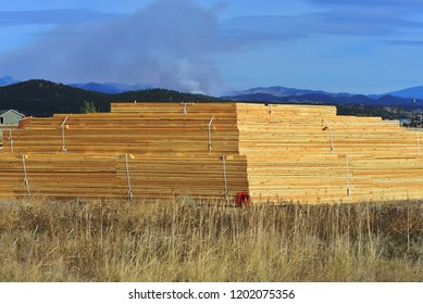 A stack or rafters at a construction site