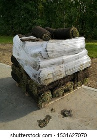 Stack of sod rolls for new green lawn installation in the park