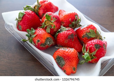 Stack of Spoiled strawberries
