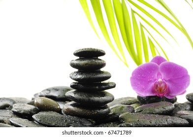 Stack stones in balance with green ivy and orchid on pebble