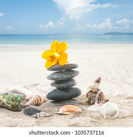 stack of stones with yellow flower and shells on ocean beach