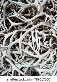 Stacked antlers - Jackson Hole