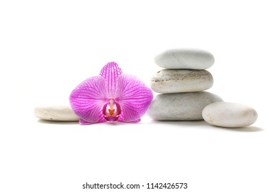 Stacked gray stones ,pink orchid isolated on white background
