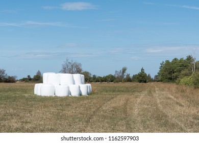Stacked hay bales in a stubble field