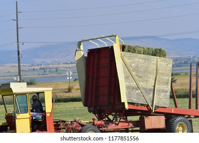 Stacked hay in farm equipment