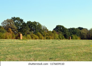 stacked hay to a tower in a meadow landscape edged with trees and shrubs