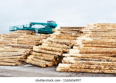 Stacked logs at sawmill with bark removed and wood machinery