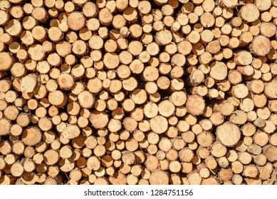 stacked pine wood logs bakcground