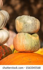 Stacked Pumpkins at the Pumpkin Show