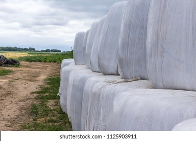 Stacked as a pyramid, round bales of silage, wrapped in a membrane. Food and bedding for the cows in the winter is stored in a field.Podlasie, Poland.