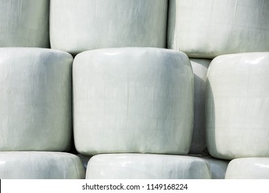 Stacked round silage bales wrapped in white film to be used later for feeding cattle.