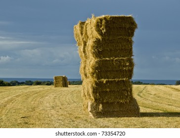 Stacked straw hay bails in field