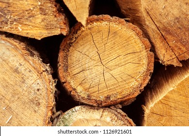 Stacked tree trunks detail. Finland lumber industry. Nature background