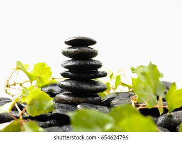 Stacked wet stones and fern leaf