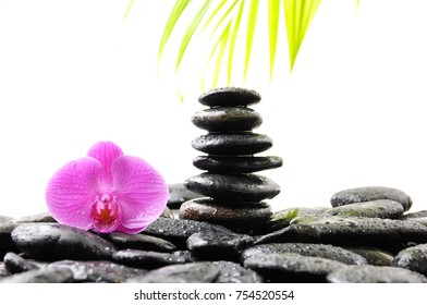 Stacked wet stones and pink orchid with palm leaf