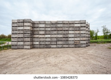 stacked wooden bins during the Blossoms of fruit trees tallest the street
