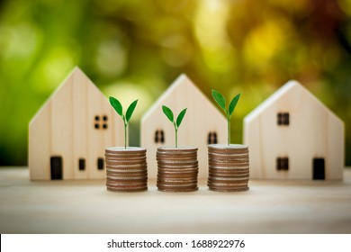 Stacking coins with tree in front of houses model.Saving and investment to buy house concept for the future.plant growing on coins.