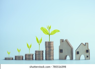 stacking dollars coins and green tree growing with a house model.save and investment for buy house concept . pastel tone.