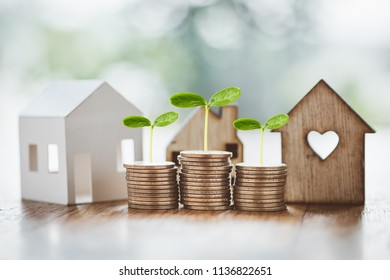 stacking dollars coins with a house model.save and investment for buy house concept .for the future.plant growing up on coin.