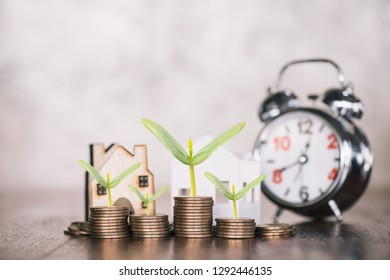 stacking dollars coins with a house model.save and investment for buy house concept .for the future.