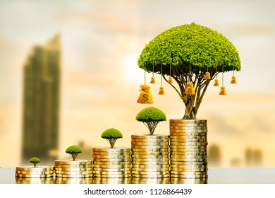 Stacking gold coins and money bag of tree with growing put on the wood on the morning sunlight in the photo blur cityscape background, Saving money and loan for business investment concept.