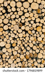 Stacking of round wood. Dry cut wood texture. Timber industry. Woodpile of light color core with cracks. Wood storage place. The structure of dry birch logs. Fuel materials for firewood in the village