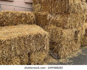 Stacks of fall hay bales. Haystack