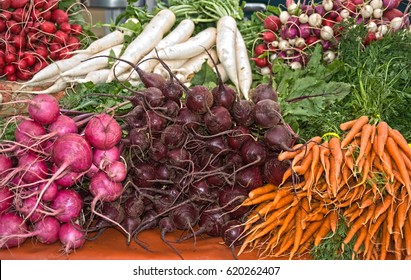 Stacks of fresh organic root vegetables, like carrots, beets and radishes are on display at a local farmer's market.  These markets help reduce carbon footprints by encouraging local food production.