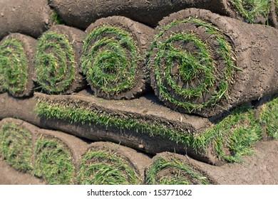 stacks of sod rolls