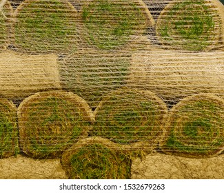 Stacks of sod rolls for new lawn. Natural grass turf for installing making new field