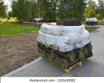 Stacks of sod rolls on pallets for new lawn, lawn planting technologies in landscape design, horizontal image