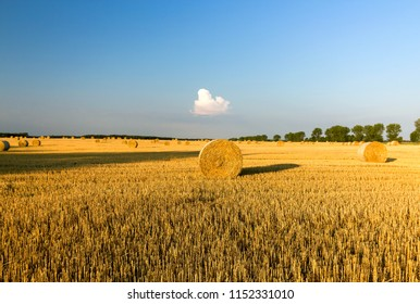 Stacks of straw and hay on the wheat field and blue sky